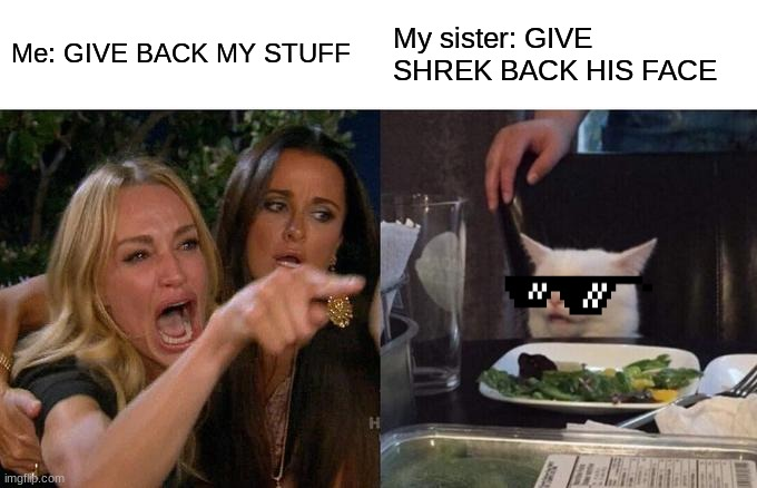 Woman Yelling At Cat Meme |  Me: GIVE BACK MY STUFF; My sister: GIVE SHREK BACK HIS FACE | image tagged in memes,woman yelling at cat | made w/ Imgflip meme maker
