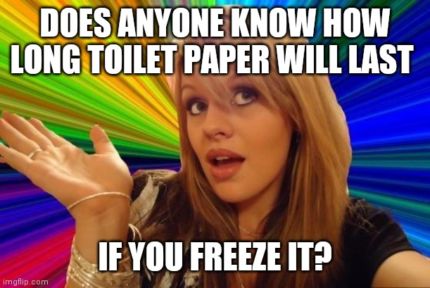 Dumb Blonde |  DOES ANYONE KNOW HOW LONG TOILET PAPER WILL LAST; IF YOU FREEZE IT? | image tagged in memes,dumb blonde | made w/ Imgflip meme maker