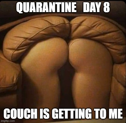 Sexy quarantine couch |  QUARANTINE   DAY 8; COUCH IS GETTING TO ME | image tagged in sexy couch,quarantine | made w/ Imgflip meme maker