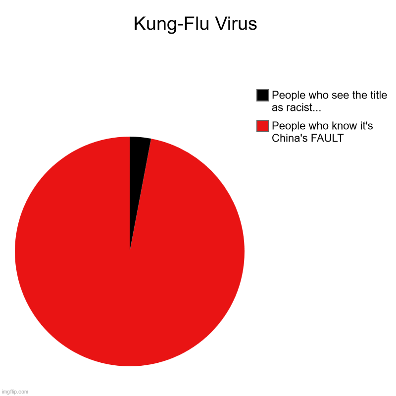 Kung-Flu Virus | People who know it's China's FAULT, People who see the title as racist... | image tagged in charts,pie charts | made w/ Imgflip chart maker
