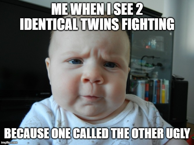 Are you serious? |  ME WHEN I SEE 2 IDENTICAL TWINS FIGHTING; BECAUSE ONE CALLED THE OTHER UGLY | image tagged in are you serious | made w/ Imgflip meme maker