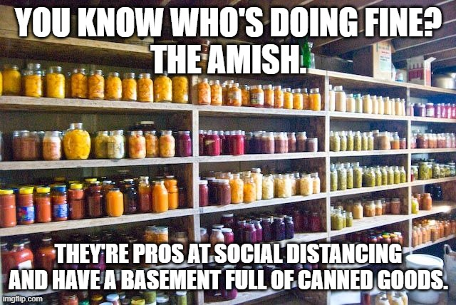 You know who's doing fine? The Amish. |  YOU KNOW WHO'S DOING FINE? THE AMISH. THEY'RE PROS AT SOCIAL DISTANCING AND HAVE A BASEMENT FULL OF CANNED GOODS. | image tagged in coronavirus,quarantine,covid-19,covid19,amish,social distancing | made w/ Imgflip meme maker