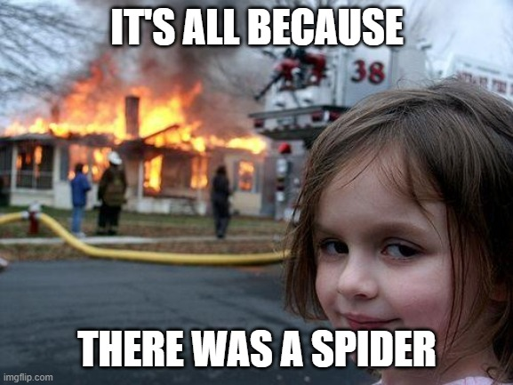 Disaster Girl |  IT'S ALL BECAUSE; THERE WAS A SPIDER | image tagged in memes,disaster girl | made w/ Imgflip meme maker