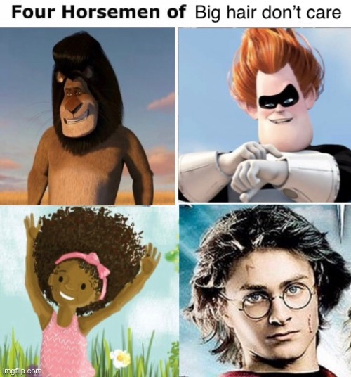 The four horsemen of big hair don't care | image tagged in big hair,memes,funny,syndrome,harry potter,madagascar | made w/ Imgflip meme maker