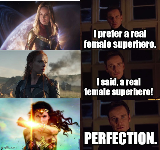 I know somebody's going to get triggered XD |  I prefer a real female superhero. I said, a real female superhero! PERFECTION. | image tagged in perfection,captain marvel,black widow,wonder woman,wonder woman rocks,dceu forever | made w/ Imgflip meme maker