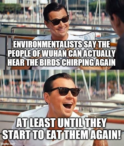 Leonardo Dicaprio Wolf Of Wall Street | ENVIRONMENTALISTS SAY THE PEOPLE OF WUHAN CAN ACTUALLY HEAR THE BIRDS CHIRPING AGAIN AT LEAST UNTIL THEY START TO EAT THEM AGAIN! | image tagged in memes,leonardo dicaprio wolf of wall street | made w/ Imgflip meme maker