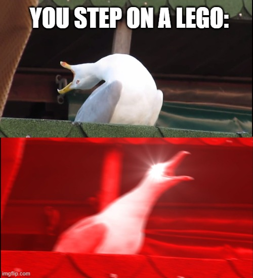 Screaming bird | YOU STEP ON A LEGO: | image tagged in screaming bird | made w/ Imgflip meme maker