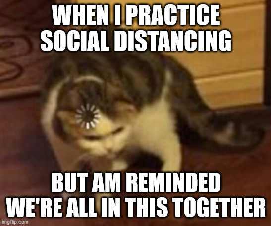 Am I right? Or am I just an oxymoron? | WHEN I PRACTICE SOCIAL DISTANCING BUT AM REMINDED WE'RE ALL IN THIS TOGETHER | image tagged in loading cat | made w/ Imgflip meme maker