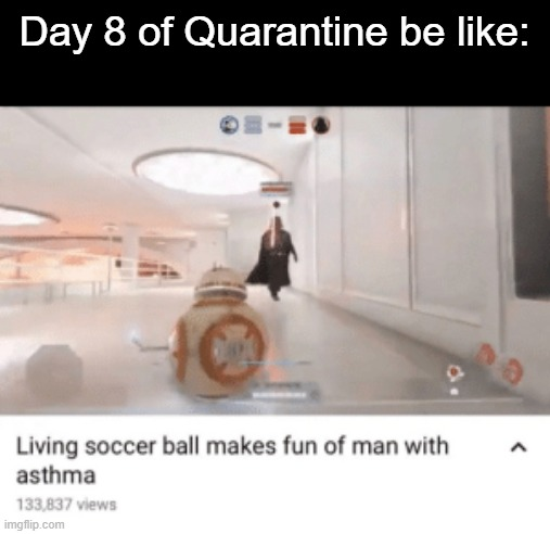 Day 8 of Quarantine | Day 8 of Quarantine be like: | image tagged in quarantine,coronavirus,oh wow are you actually reading these tags,it's okay,well nevermind,stop reading the tags | made w/ Imgflip meme maker