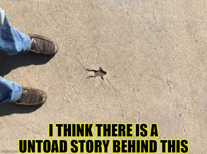 Toad mode |  I THINK THERE IS A UNTOAD STORY BEHIND THIS | image tagged in forgcrete,funny,frog,memes,true story | made w/ Imgflip meme maker
