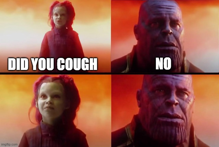 thanos what did it cost |  NO; DID YOU COUGH | image tagged in thanos what did it cost | made w/ Imgflip meme maker