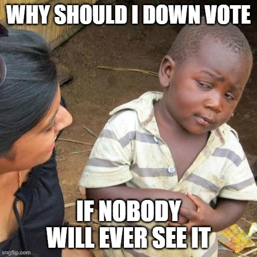 Third World Skeptical Kid |  WHY SHOULD I DOWN VOTE; IF NOBODY WILL EVER SEE IT | image tagged in memes,third world skeptical kid | made w/ Imgflip meme maker