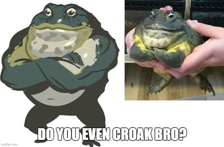 Buff Frog |  DO YOU EVEN CROAK BRO? | image tagged in do you even lift,weight lifting,frog | made w/ Imgflip meme maker