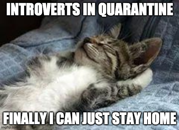 Introverts in quarantine |  INTROVERTS IN QUARANTINE; FINALLY I CAN JUST STAY HOME | image tagged in quarantine,introvert,home | made w/ Imgflip meme maker