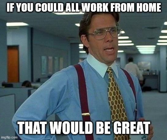 That Would Be Great Meme |  IF YOU COULD ALL WORK FROM HOME; THAT WOULD BE GREAT | image tagged in memes,that would be great | made w/ Imgflip meme maker