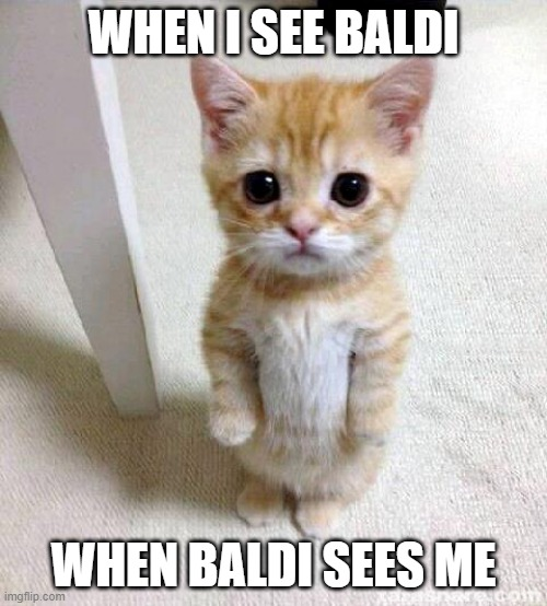 Cute Cat |  WHEN I SEE BALDI; WHEN BALDI SEES ME | image tagged in memes,cute cat | made w/ Imgflip meme maker