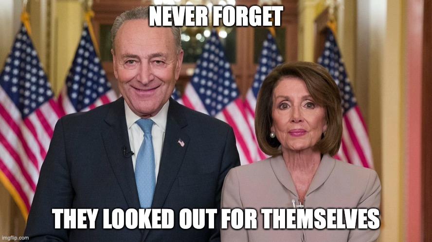 NEVER FORGET THEY LOOKED OUT FOR THEMSELVES | image tagged in congress,chuck schumer,nancy pelosi,coronavirus | made w/ Imgflip meme maker