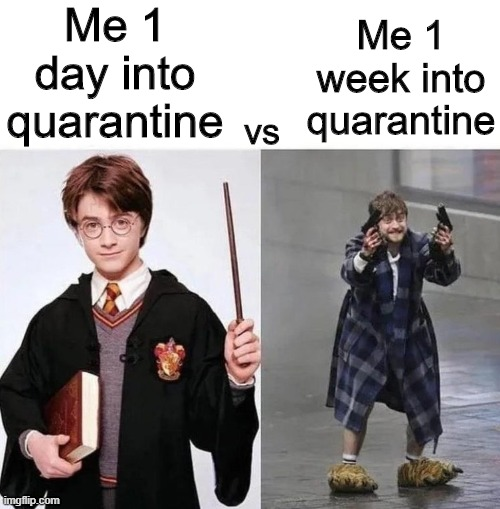 It's been hard |  Me 1 day into quarantine; Me 1 week into quarantine; vs | image tagged in memes,funny,harry potter,quarantine,crazy harry potter | made w/ Imgflip meme maker