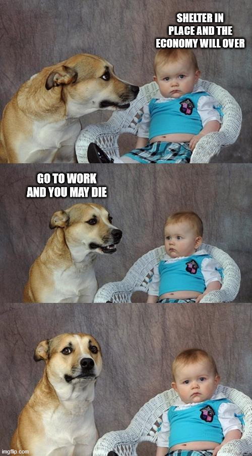 Dad Joke Dog | SHELTER IN PLACE AND THE ECONOMY WILL OVER GO TO WORK AND YOU MAY DIE | image tagged in memes,dad joke dog | made w/ Imgflip meme maker
