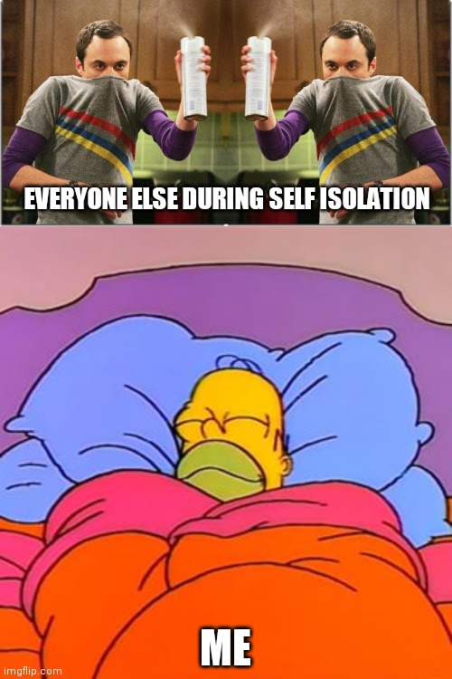 Chillin like a villain | EVERYONE ELSE DURING SELF ISOLATION ME | image tagged in coronavirus,covid-19,quarantine,homer simpson,sheldon cooper | made w/ Imgflip meme maker