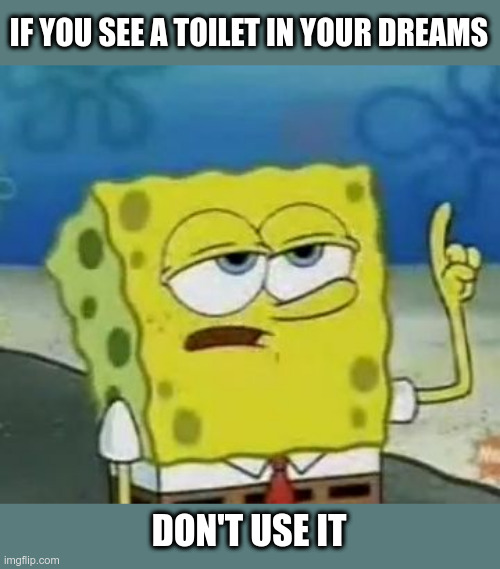 I'll Have You Know Spongebob |  IF YOU SEE A TOILET IN YOUR DREAMS; DON'T USE IT | image tagged in memes,ill have you know spongebob,dreams,toilet | made w/ Imgflip meme maker