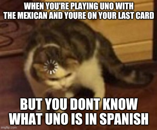 Loading cat | WHEN YOU'RE PLAYING UNO WITH THE MEXICAN AND YOURE ON YOUR LAST CARD BUT YOU DONT KNOW WHAT UNO IS IN SPANISH | image tagged in loading cat | made w/ Imgflip meme maker