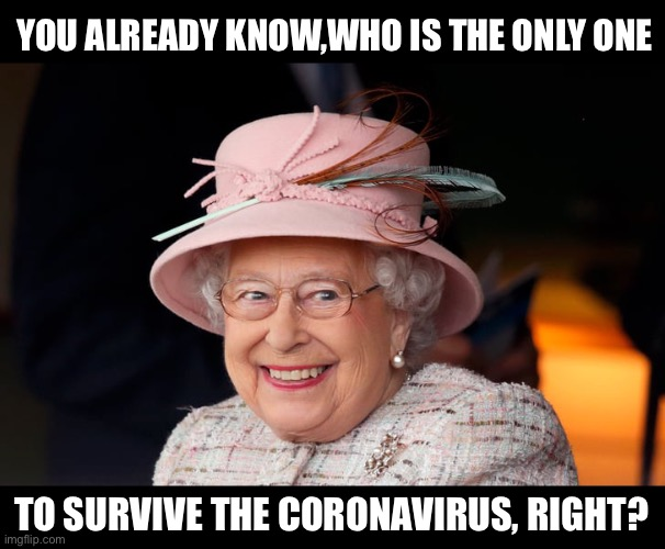 Image result for queen immortal