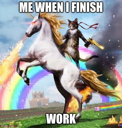 Welcome To The Internets Meme |  ME WHEN I FINISH; WORK | image tagged in memes,welcome to the internets | made w/ Imgflip meme maker