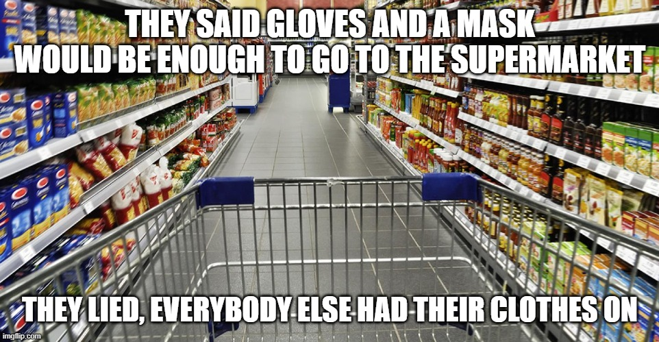 Supermarket |  THEY SAID GLOVES AND A MASK WOULD BE ENOUGH TO GO TO THE SUPERMARKET; THEY LIED, EVERYBODY ELSE HAD THEIR CLOTHES ON | image tagged in dad jokes,reddit,supermarket | made w/ Imgflip meme maker