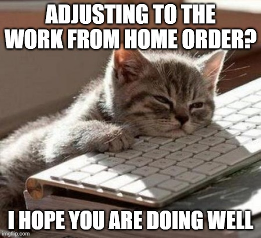 tired cat |  ADJUSTING TO THE WORK FROM HOME ORDER? I HOPE YOU ARE DOING WELL | image tagged in tired cat | made w/ Imgflip meme maker