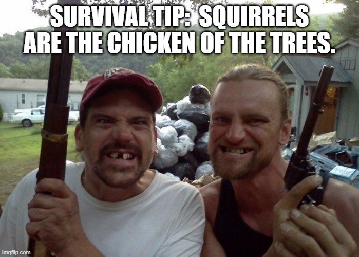 Survival tip |  SURVIVAL TIP:  SQUIRRELS ARE THE CHICKEN OF THE TREES. | image tagged in rednecks,survival,food | made w/ Imgflip meme maker