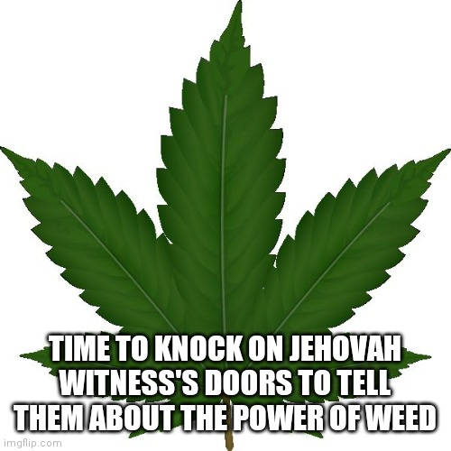 weed |  TIME TO KNOCK ON JEHOVAH WITNESS'S DOORS TO TELL THEM ABOUT THE POWER OF WEED | image tagged in weed | made w/ Imgflip meme maker