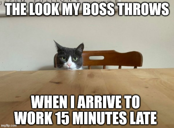 mad boss |  THE LOOK MY BOSS THROWS; WHEN I ARRIVE TO WORK 15 MINUTES LATE | image tagged in work,fun,funny | made w/ Imgflip meme maker
