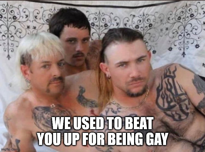 The New Gay |  WE USED TO BEAT YOU UP FOR BEING GAY | image tagged in tiger king and cubs,tiger king | made w/ Imgflip meme maker