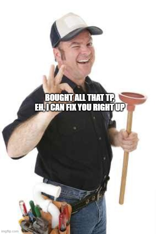 plumber |  BOUGHT ALL THAT TP, EH, I CAN FIX YOU RIGHT UP | image tagged in plumber | made w/ Imgflip meme maker