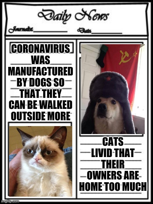 A Devious Plan | CORONAVIRUS WAS MANUFACTURED BY DOGS SO THAT THEY CAN BE WALKED OUTSIDE MORE CATS LIVID THAT THEIR OWNERS ARE HOME TOO MUCH | image tagged in dogs an cats,dog vs cat,grumpy cat,coronavirus | made w/ Imgflip meme maker