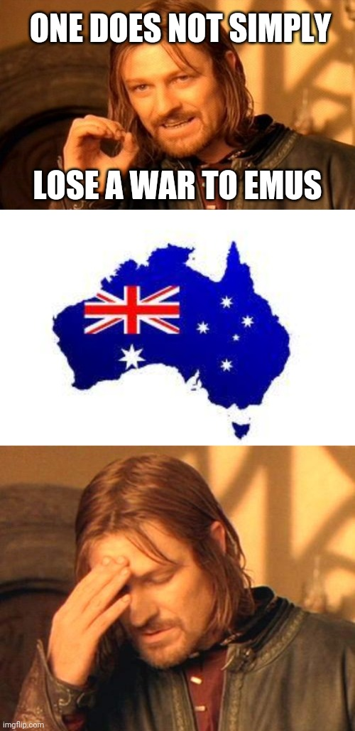 ONE DOES NOT SIMPLY; LOSE A WAR TO EMUS | image tagged in memes,one does not simply,australia,frustrated boromir,emu,history | made w/ Imgflip meme maker