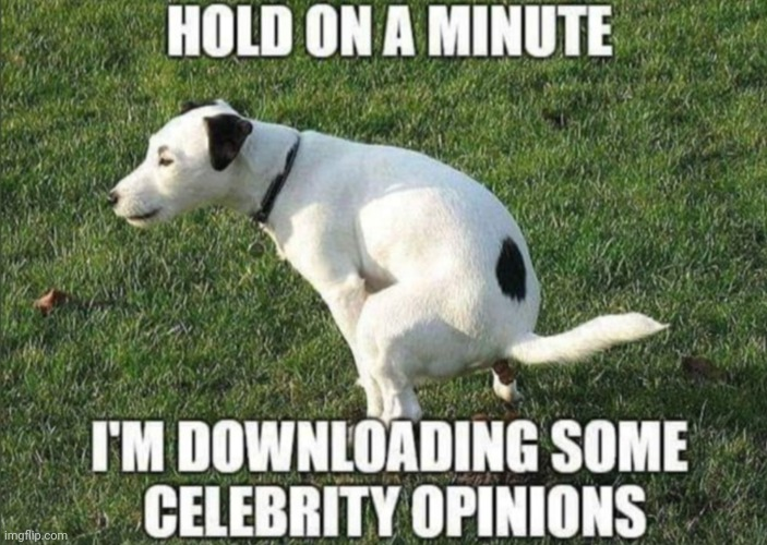 Massive Value of Celebrity Opinions | image tagged in celebrity,dog poop,celebration,opinions,bad pun dog,the great awakening | made w/ Imgflip meme maker