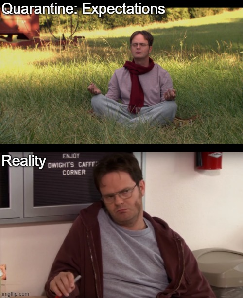Quarantine: Expectations; Reality | image tagged in theoffice | made w/ Imgflip meme maker