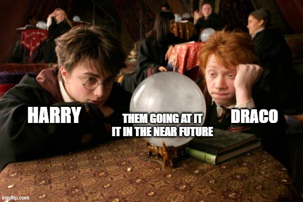 Harry Potter meme |  DRACO; HARRY; THEM GOING AT IT IT IN THE NEAR FUTURE | image tagged in harry potter meme | made w/ Imgflip meme maker