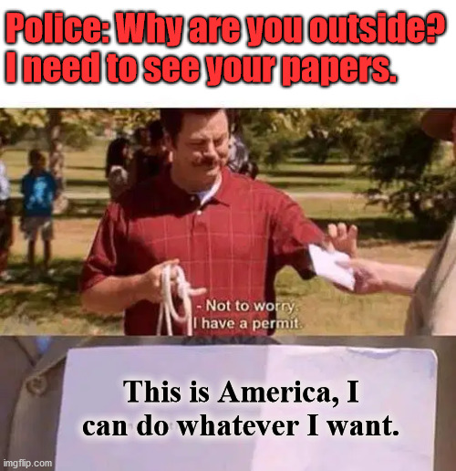 This is America, not a Police State. Freedom over Socialist like state. | Police: Why are you outside? I need to see your papers. This is America, I can do whatever I want. | image tagged in america,police state,freedom | made w/ Imgflip meme maker