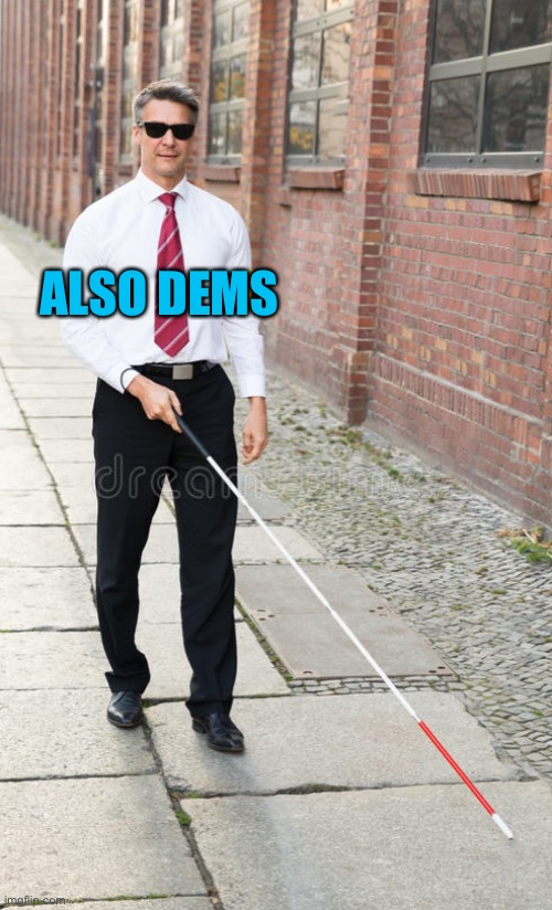 ALSO DEMS | made w/ Imgflip meme maker