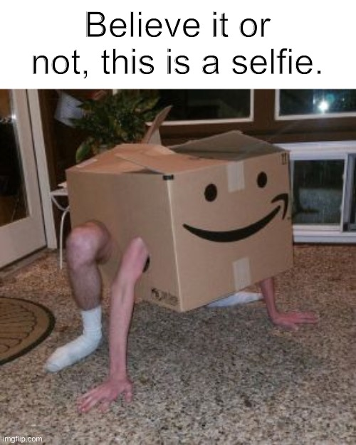 Bruh |  Believe it or not, this is a selfie. | image tagged in amazon box guy,memes,selfie | made w/ Imgflip meme maker