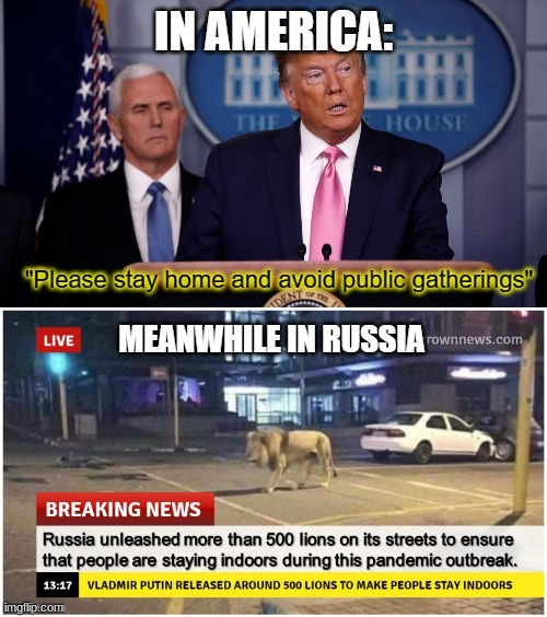 In America, Donald Trump make you stay home. In Soviet Russia, lions make you stay home. | image tagged in repost | made w/ Imgflip meme maker
