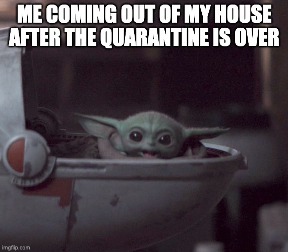 Excited Baby Yoda |  ME COMING OUT OF MY HOUSE AFTER THE QUARANTINE IS OVER | image tagged in excited baby yoda | made w/ Imgflip meme maker