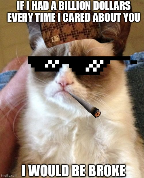 Grumpy Cat Meme | IF I HAD A BILLION DOLLARS EVERY TIME I CARED ABOUT YOU I WOULD BE BROKE | image tagged in memes,grumpy cat | made w/ Imgflip meme maker
