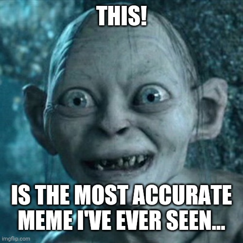 Gollum Meme | THIS! IS THE MOST ACCURATE MEME I'VE EVER SEEN... | image tagged in memes,gollum | made w/ Imgflip meme maker