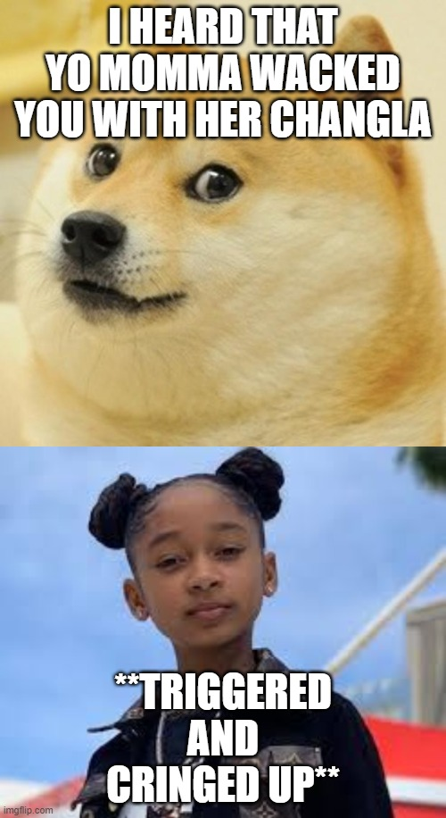 I HEARD THAT YO MOMMA WACKED YOU WITH HER CHANGLA; **TRIGGERED AND CRINGED UP** | image tagged in memes,doge | made w/ Imgflip meme maker