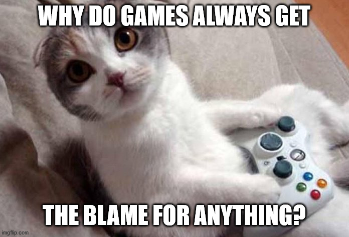 Gaming cat | WHY DO GAMES ALWAYS GET THE BLAME FOR ANYTHING? | image tagged in gaming cat | made w/ Imgflip meme maker