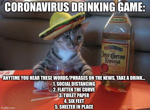 Shots, Shots, Shots! |  CORONAVIRUS DRINKING GAME:; ANYTIME YOU HEAR THESE WORDS/PHRASES ON THE NEWS, TAKE A DRINK... 1. SOCIAL DISTANCING 2. FLATTEN THE CURVE 3. TOILET PAPER 4. SIX FEET 5. SHELTER IN PLACE | image tagged in alcohol,coronavirus,drinking games,cat,corona,corona virus | made w/ Imgflip meme maker